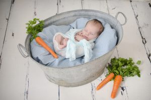 Peter Rabbit Inspired Newborn Baby Shoot